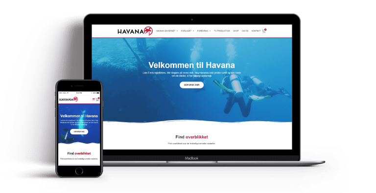 webdesign for Havana